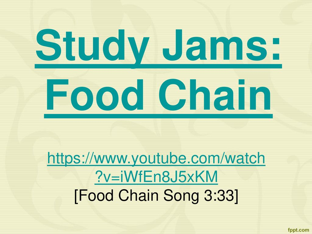 Youtube Food Chain Song